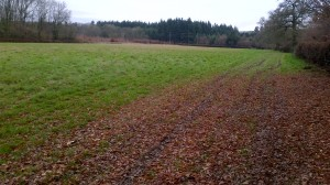 Fernhurst SDNP site Dec '13