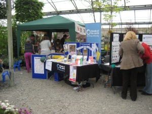 our colourful stall at South Downs nurseries